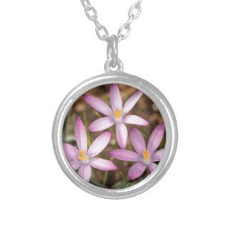 Lavendel-Krokus-Dreieck Versilberte Kette