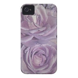 Lavendel-Rosensammlung iPhone 4 Hüllen