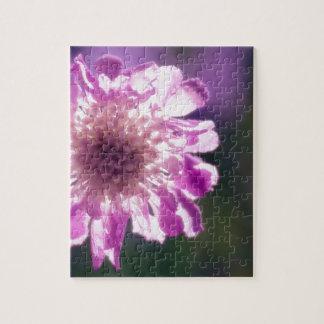 Lavendel Scabiosa Blume Puzzle