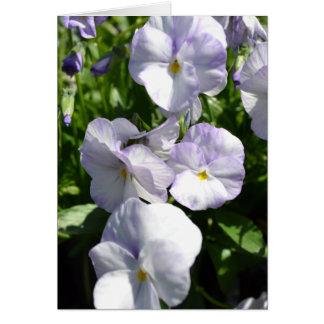 Lavendel-Stiefmütterchen Karte