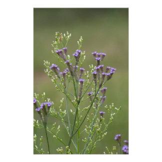 Lavendel-Verbene-Wildblumen Briefpapier
