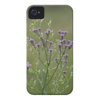 Lavendel-Verbene-Wildblumen iPhone 4 Cover
