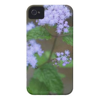Lavendelageratums-Wildblumen Alabamas wilde iPhone 4 Cover
