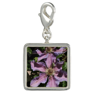LavendelClematis Foto Charms