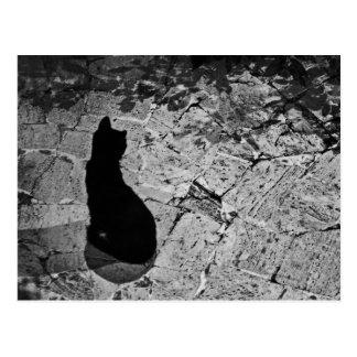 Le Chat Noir Postkarte