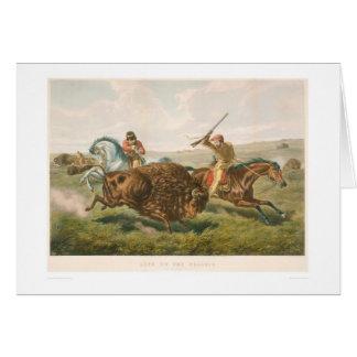 Leben auf dem Grasland: Die Büffel-Jagd (0878A) Karte