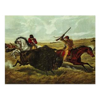 Leben auf dem Grasland - die Büffel-Jagd, 1862 Postkarte