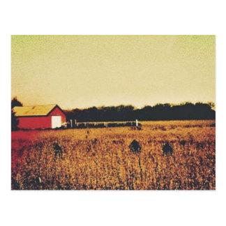 Leben in kurzen Worten Postkarte