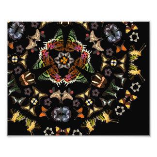 Lebendes Kaleidoskop: Schmetterlings-Muster Fotodruck