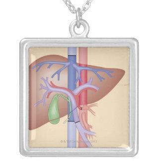 Leber-Transplantations-Verfahren Halskette Mit Quadratischem Anhänger