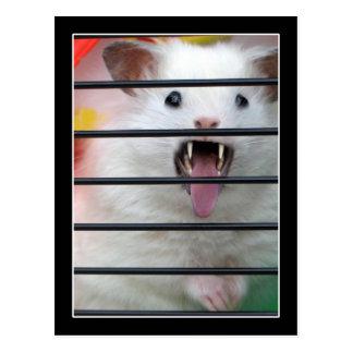 Lebewesen ist ein gemeiner Hamster Postkarte
