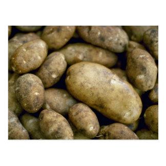 Leckere Kartoffeln Postkarte