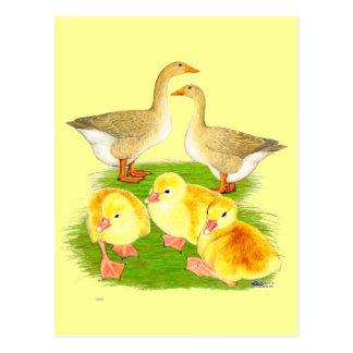 Lederfarbene Gans-Familie Postkarte