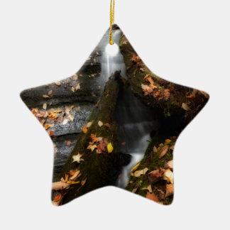 Lee fällt Kaskade Keramik Stern-Ornament