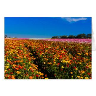 Leere Gruß Karte mit Blume stellt auf Front auf