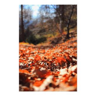 Legen auf Blätter Fotodruck