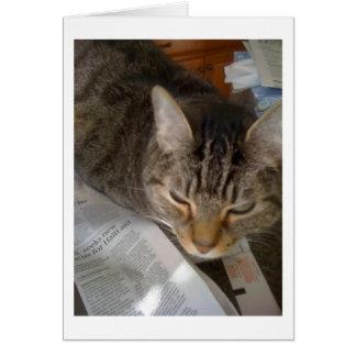 Legt die Katze in Essig ein Karte