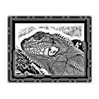 Leguan black/white postkarte