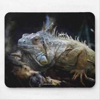 Leguan-Eidechsen-Reptil-wild lebende Tiere Mousepad