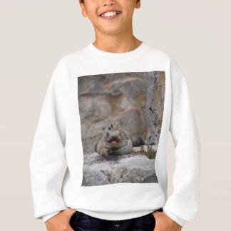Leguan in der Wartezeit Sweatshirt