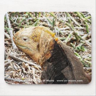 Leguan, Isla Seymour, Galapagos ist Mousepad