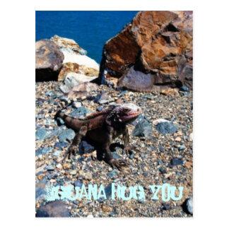 Leguan-Umarmung Sie Postkarten
