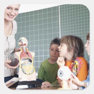 Lehrer, der Modell des menschlichen Körpers zu Quadrat-Aufkleber