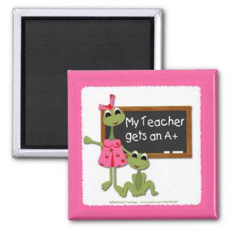 Lehrer-Frosch-Magnet Quadratischer Magnet