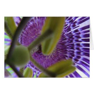 Leidenschafts-Blume 009 Karte