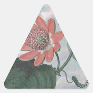 Leidenschafts-Blume Dreieckiger Aufkleber