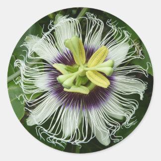 Leidenschafts-Blumen-Aufkleber Runder Aufkleber