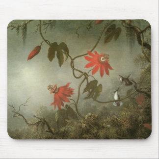 Leidenschafts-Blumen und Kolibris durch Martin J Mousepad