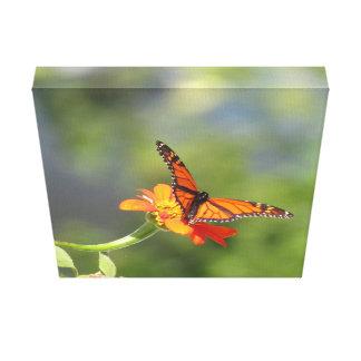 Leinwand-Druck-Schmetterling auf mexikanischer Leinwanddruck
