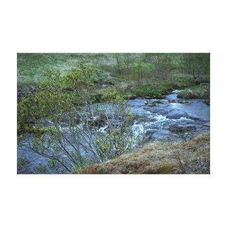 Leinwand-Glanz-Leinwand der Natur Leinwanddruck