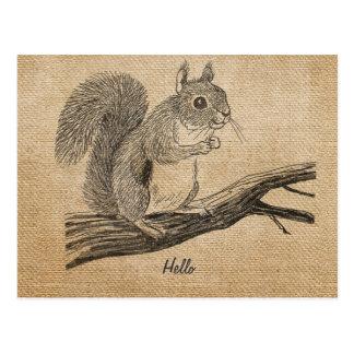 Leinwand-Vintage Eichhörnchen-Postkarte