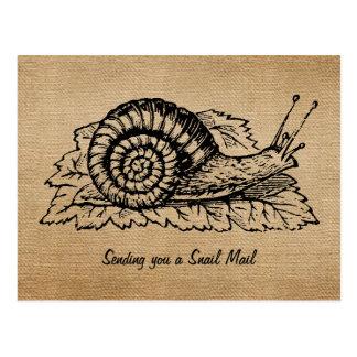 Leinwand-Vintages sendendes snail mail Postkarte
