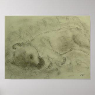 "Leinwanddruck ""Irish Terrier Welpe"" Poster"