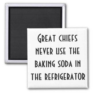 Leiter benutzen nie das Backensoda im Kühlschrank Kühlschrankmagnet