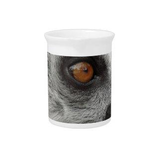 Lemur-Foto Krug