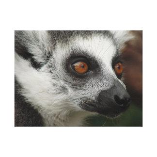 Lemur Leinwanddruck