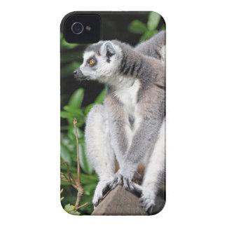 Lemur Ring-angebundener mutiger Kasten des iPhone 4 Hüllen