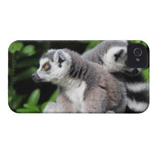 Lemur Ring-angebundener mutiger Kasten des iPhone 4 Case-Mate Hülle