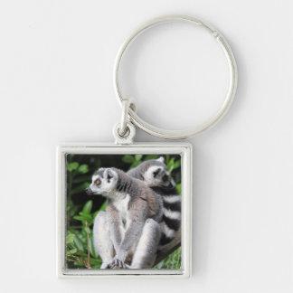 Lemur Ring-angebundener niedlicher Silberfarbener Quadratischer Schlüsselanhänger