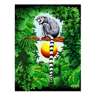 Lemur von Madagaskar Postkarte