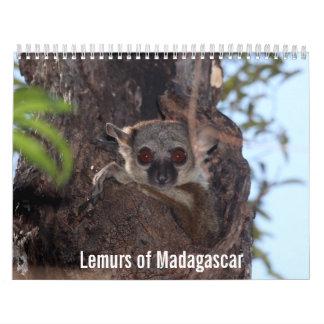 Lemurs von Madagaskar-Kalender Wandkalender