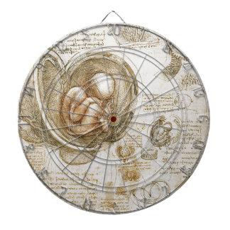 Leonardo da Vinci-Studien des Fötusses in der Dartscheibe