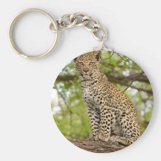 Leopard CUB auf einem Glied Schlüsselanhänger