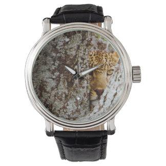 Leopard (Panthera Pardus) versteckend hinter Baum Armbanduhr
