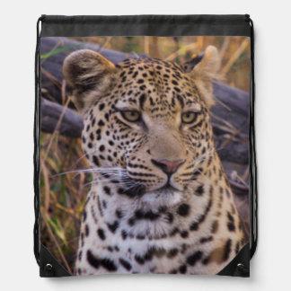 Leopardsitzen, Botswana, Afrika Turnbeutel