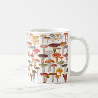 Les Champignon-Pilze Kaffeetasse